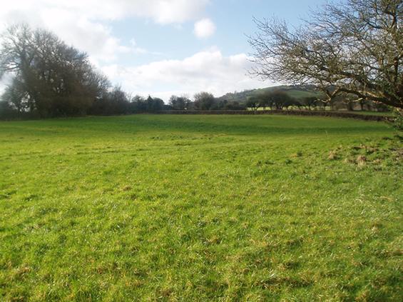 fete field